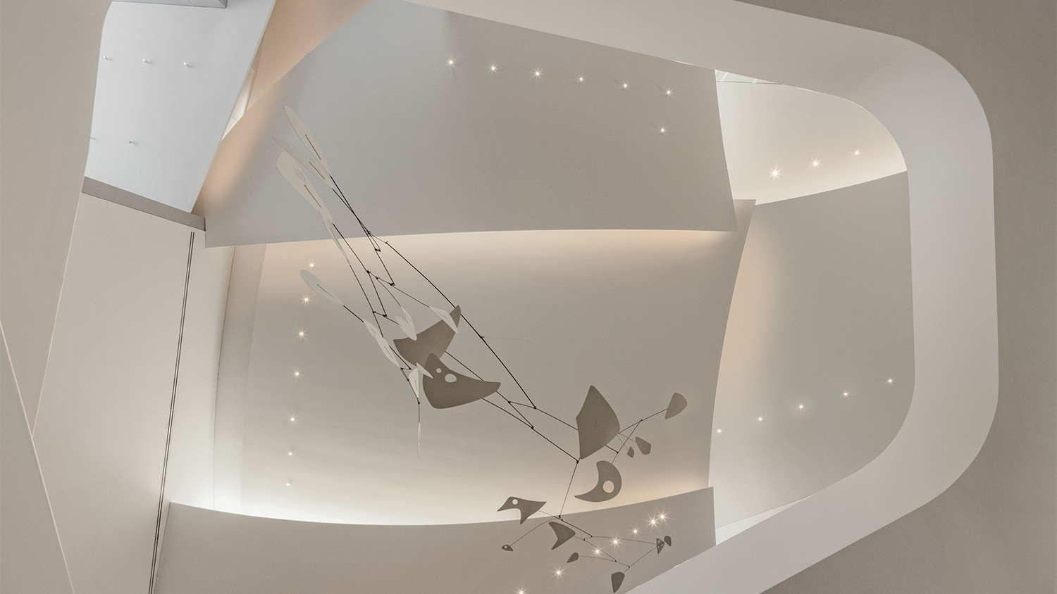 https://stevenholl.sfo2.digitaloceanspaces.com/uploads/projects/project-images/RichardBarnes_ceiling.jpg